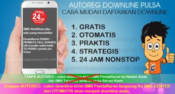 AUTOREG Downline Pulsa Otomatis